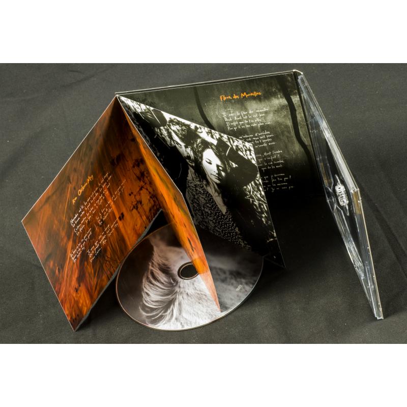 Les Discrets - Rue Octavio Mey / Fleur des Murailles CD