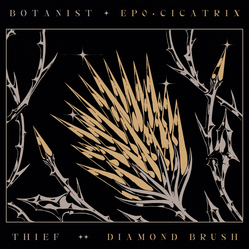 Thief - Cicatrix / Diamond Brush (Split with Botanist) Vinyl LP     Black