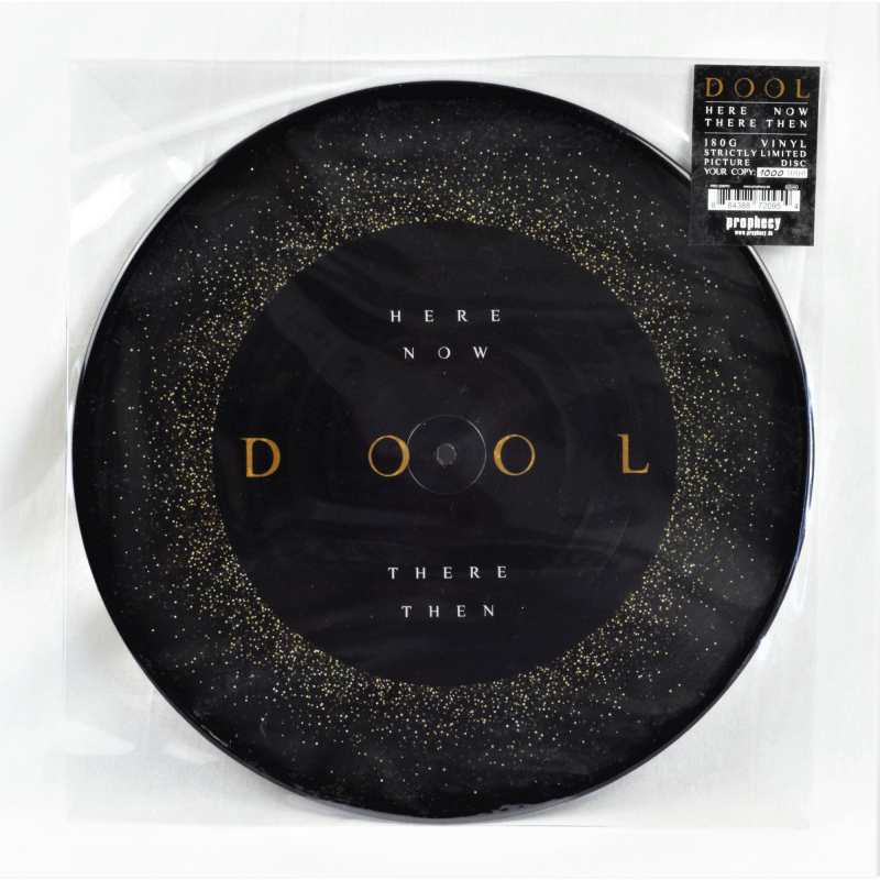 Dool - Here Now, There Then Vinyl Picture LP  |  Picture